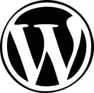 Embedding-video-in-wordpress-WikiTechGo